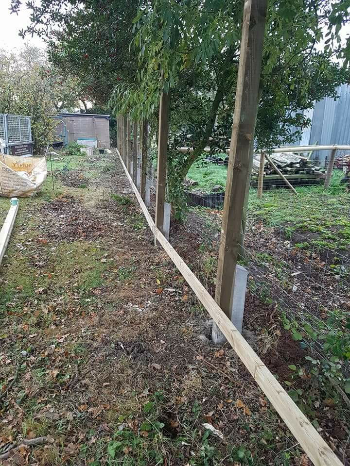 This Is A Fence In Mid Construction Using Concrete Repair Spurs (otherwise Known As Godfathers)
