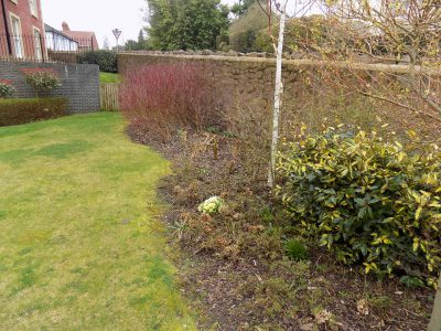 Commercial Gardening And Grounds Maintenance In Malvern 14