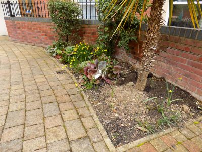 Commercial Gardening And Grounds Maintenance In Malvern 22